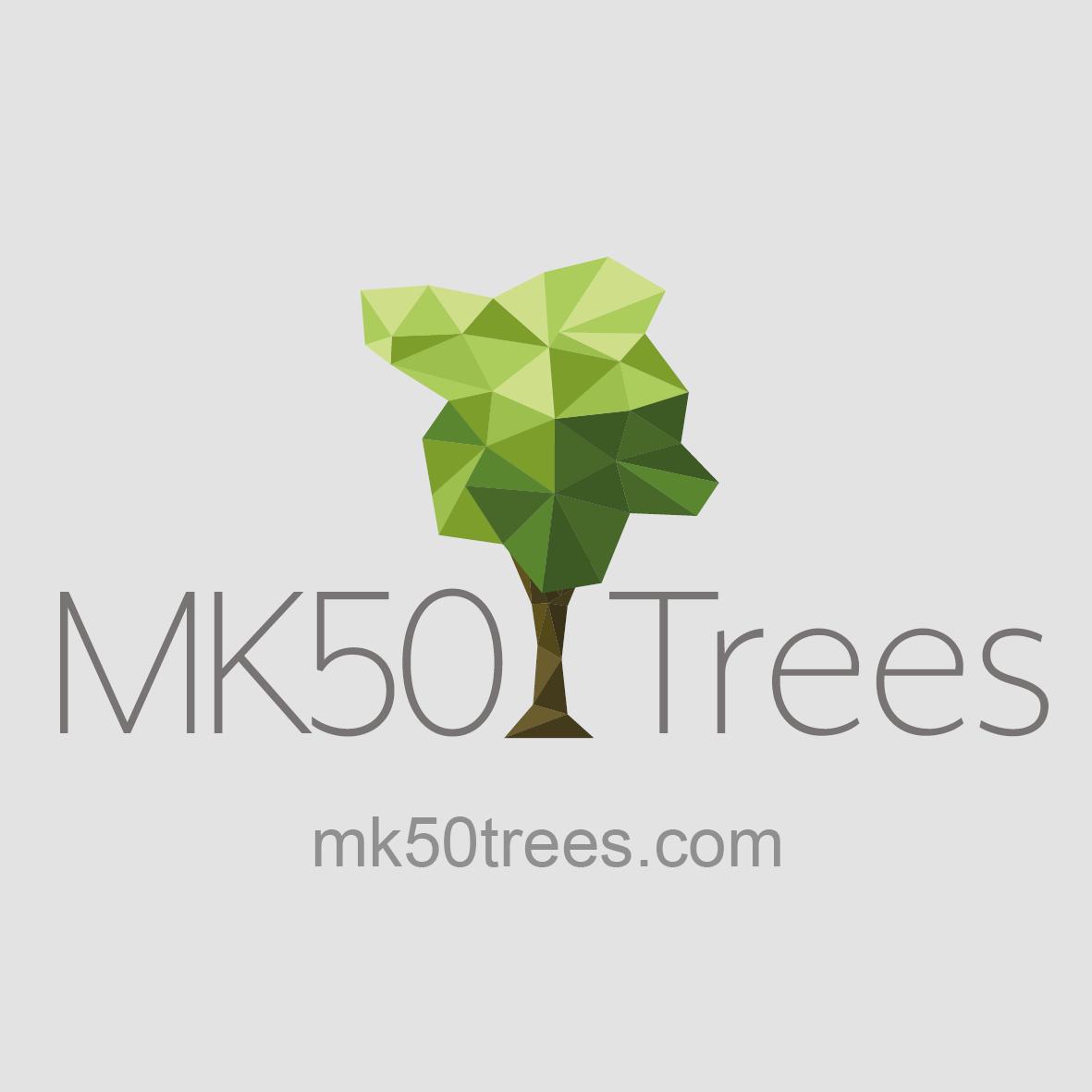 Tree logo square